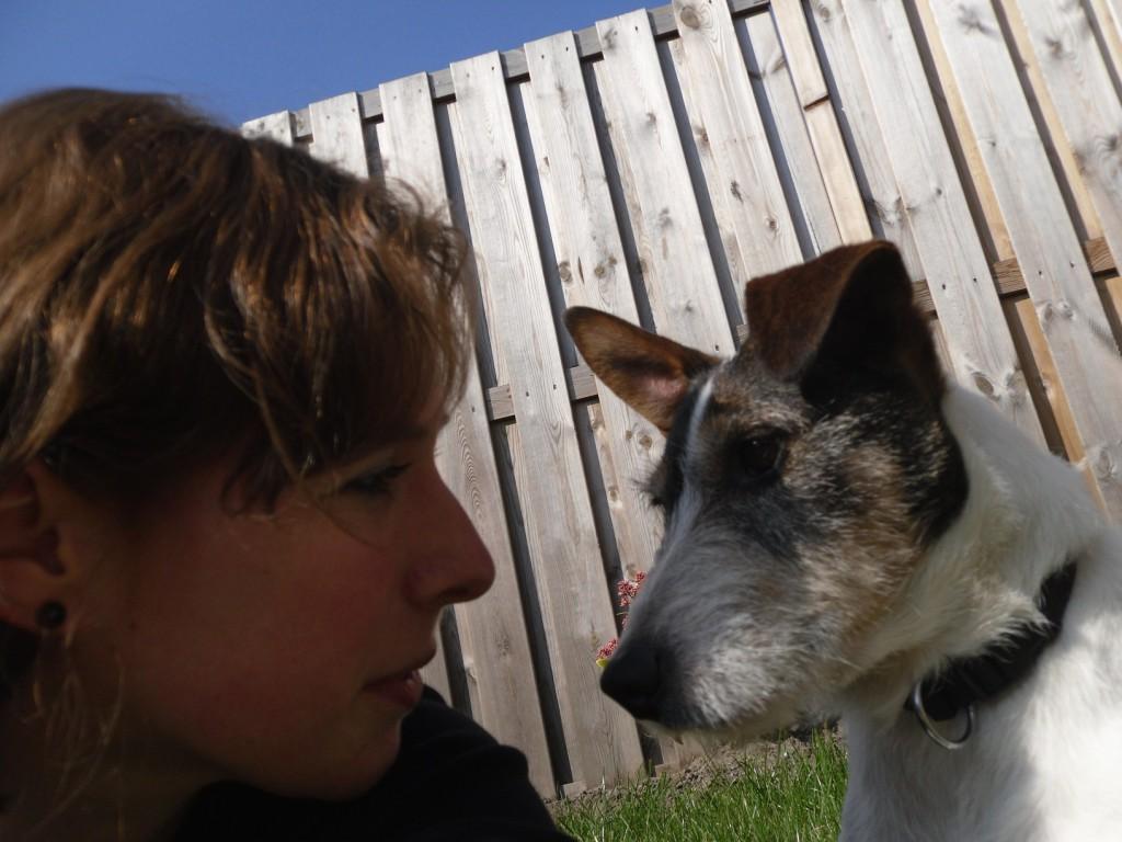 Hond, Jack Russell, Storm, afscheid