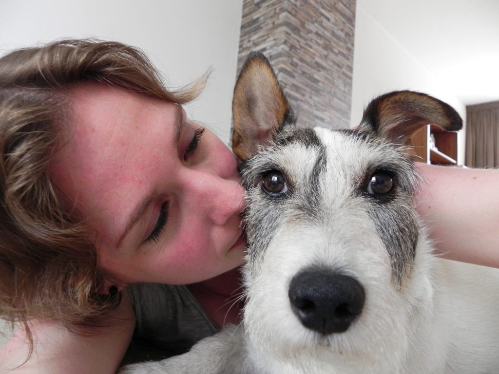 Update als je hond kanker heeft, Storm, Jack Russell