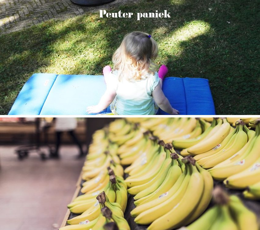 peuter paniek, peuter, supermarkt, huilbui, blog, mamablog, lifestyleblog, La Log