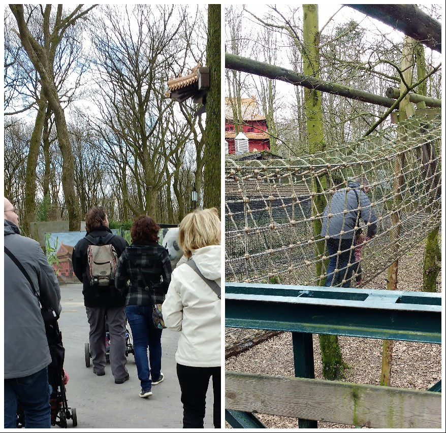 dierentuin, baby, peuter, dagje weg, Ouwehands dierenpark, blog, mamablog, La Log