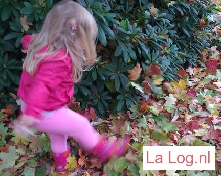 herfst, blog, kinderen, doen in de herfst, buiten, mama blog, lifestyle blog. mama-lifestyle blog, la log.nl