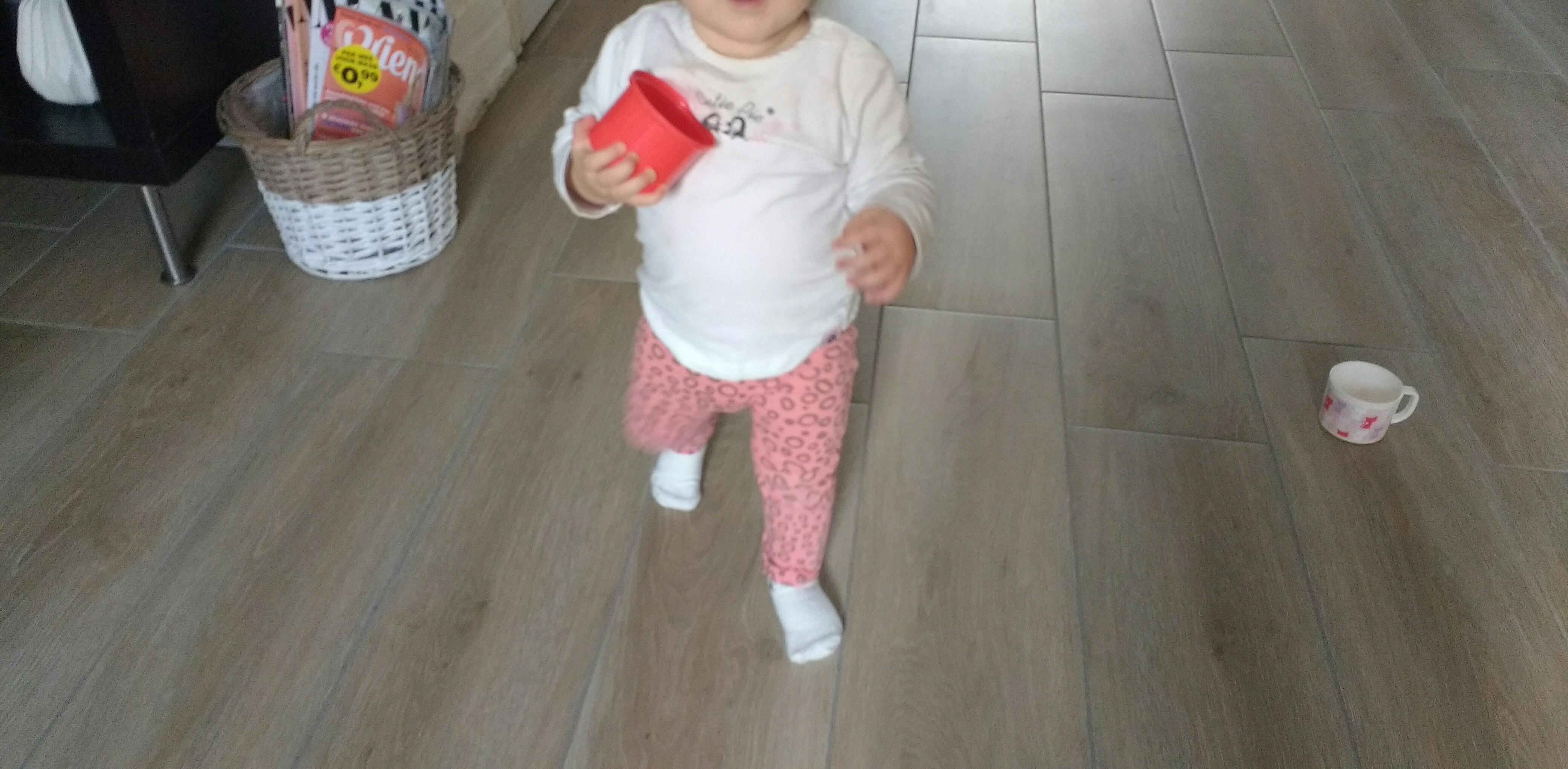 lopen, baby, wanneer baby lopen, dreumes lopen, blog, mamablog, lifestyle blog, mama-lifestyleblog, La Log.nl