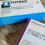 Schildklier: van Euthyrox naar Thyrax. Mijn ervaring…